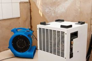 elimination of water damage and dryer with fan
